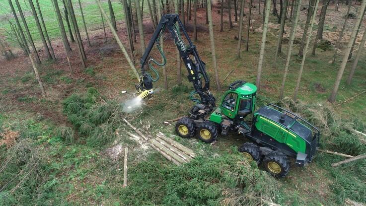 Der er plads til både natur og skovdrift