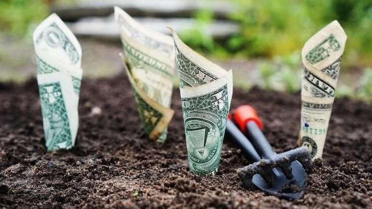 Lær at investere og få mere tid til havesysler på sigt