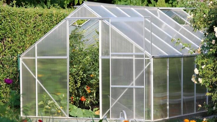 Tænk økologi i drivhuset