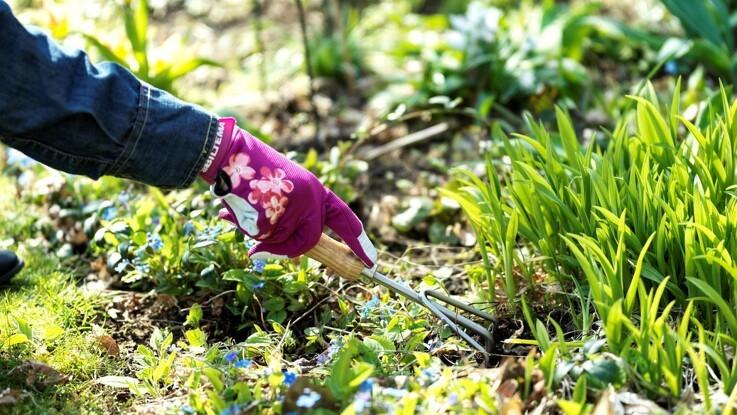 Gør haven vinterklar