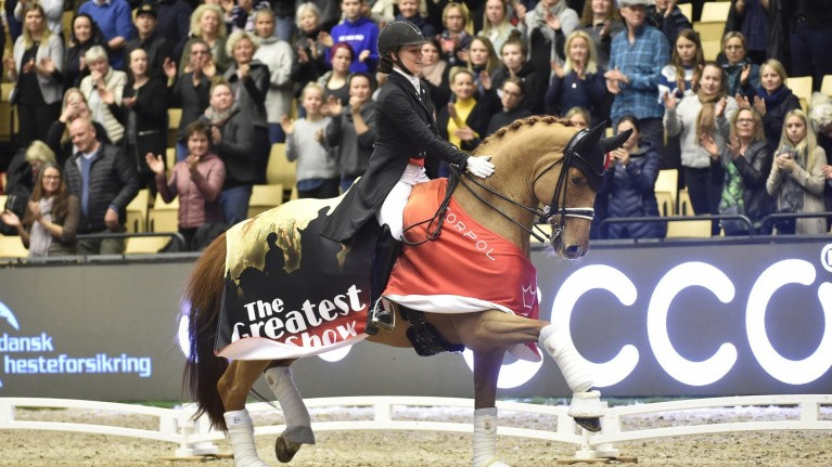 Stor heste-satsning i Boxen