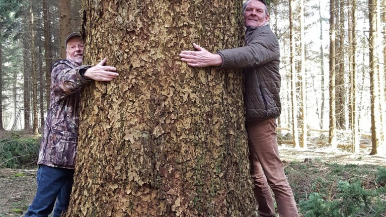 Kærlighedserklæring til et særligt træ