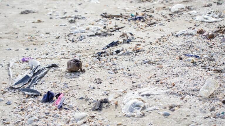 Frivillige kan få hjælp til at fjerne affald fra danske strande