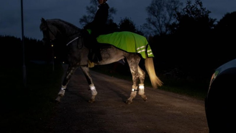 Reflekser kan redde din hest