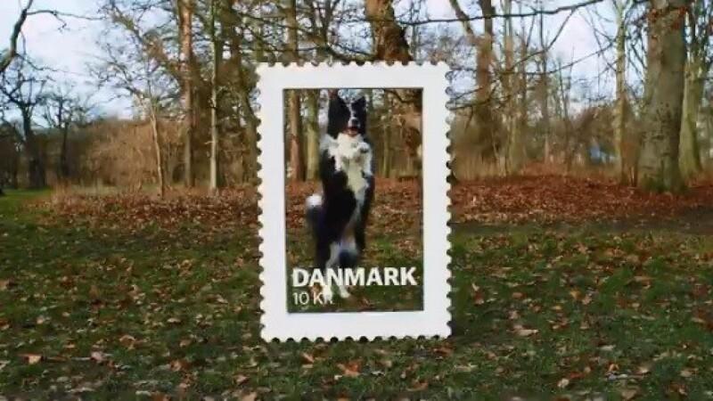 Få din hund på frimærke