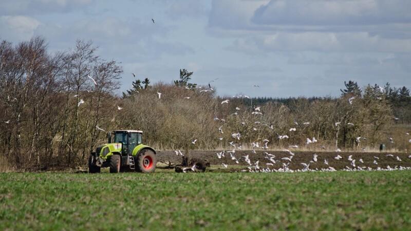 Landbrugsmilliarder kommer til tiden