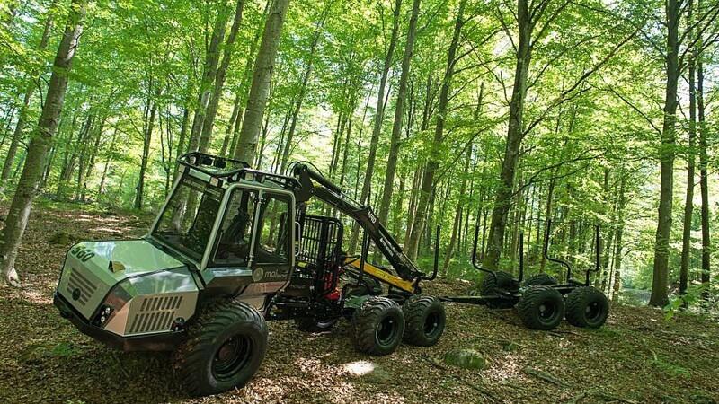 Svenske  ambitioner i de danske skove