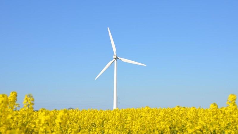 Ny omgang støtte til vindmøller