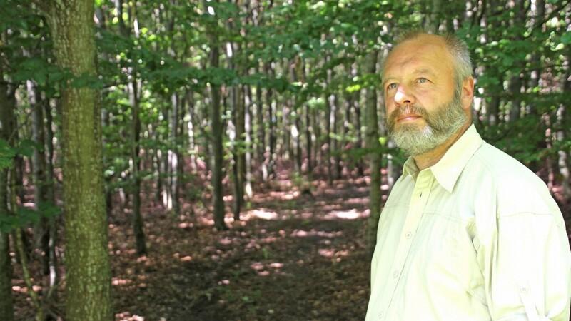 En ny skov skal planlægges rigtigt