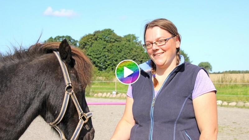 Kom i gang med klikkertræning af din hest