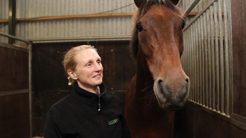 SE VIDEO: Befri din hest for støv og skimmel