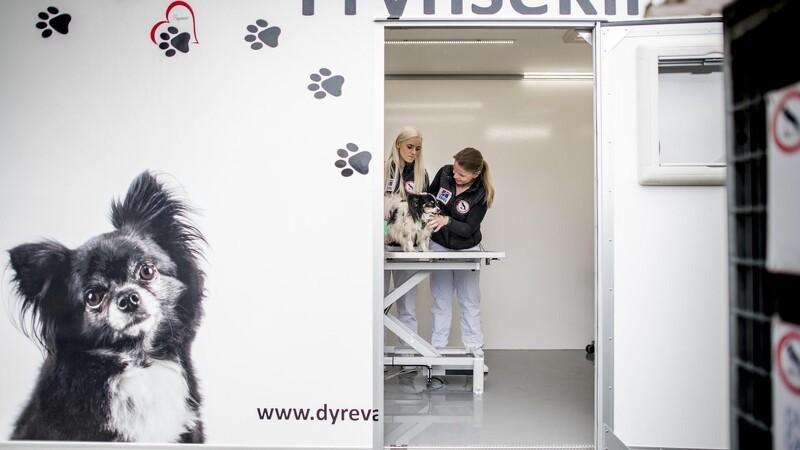 Dyreværnet starter mobil dyreklinik