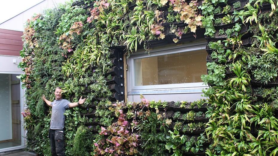 BGreen-it Living Wall 14.JPG