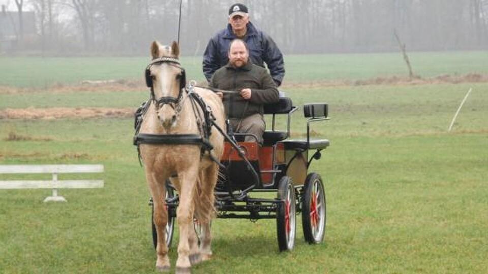 kørsel med hestevogn
